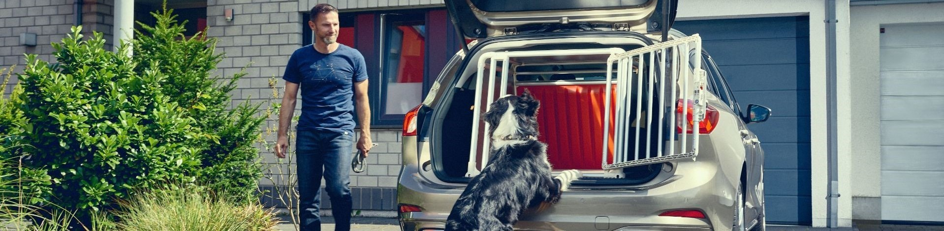 Important Things Every Dog Owner Should Consider When Buying A New Car