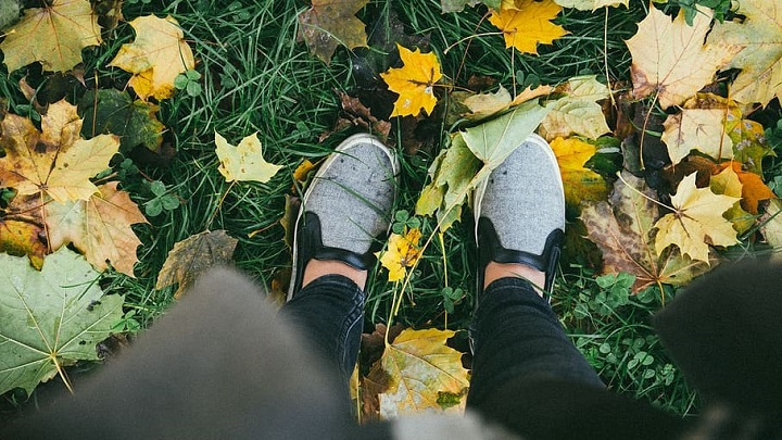 Shoes stood on green grass and leaves