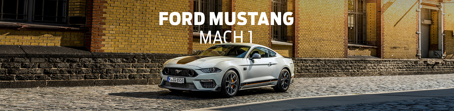 Ford Mustang Mach 1 Banner (Mach 1 Page & Mustang Page)
