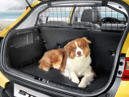 https://images.sandicliffe.co.uk/sandicliffe-shop/thumbs/Genuine-Kia-Rio-2017---Dog-Guard---Cargo-Separator-H8150ADE00-1.jpg