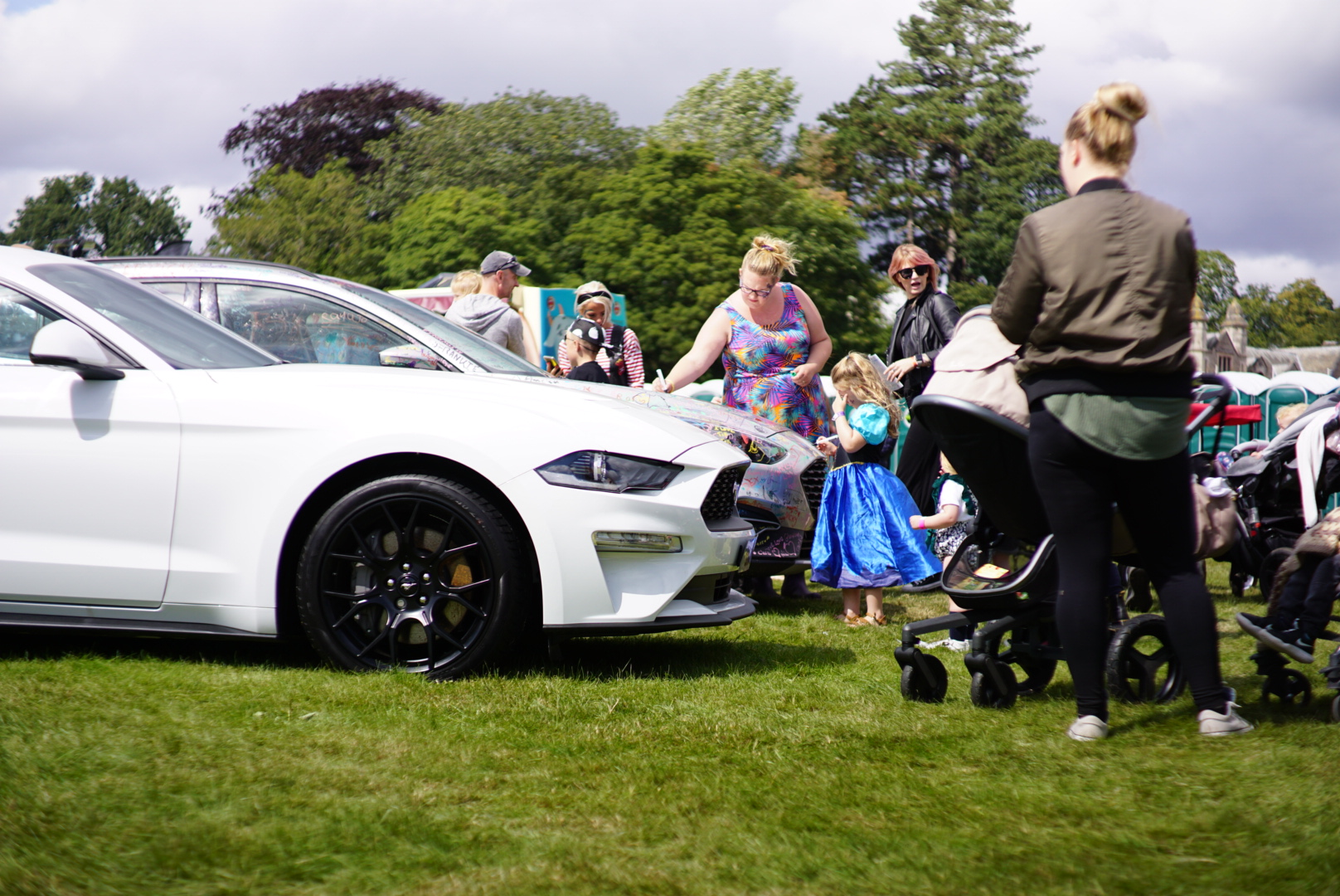 ford mustang and focus at gloworm